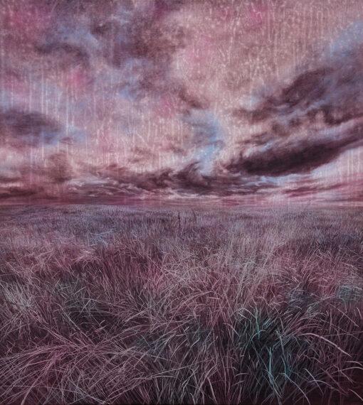Graslandschaft mit Himmel und Wolken