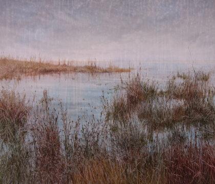 Graslandschaft an einem See im Morgenlicht
