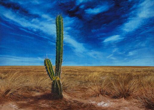 Kaktus in einer Graslandschaft mit blauem Himmel